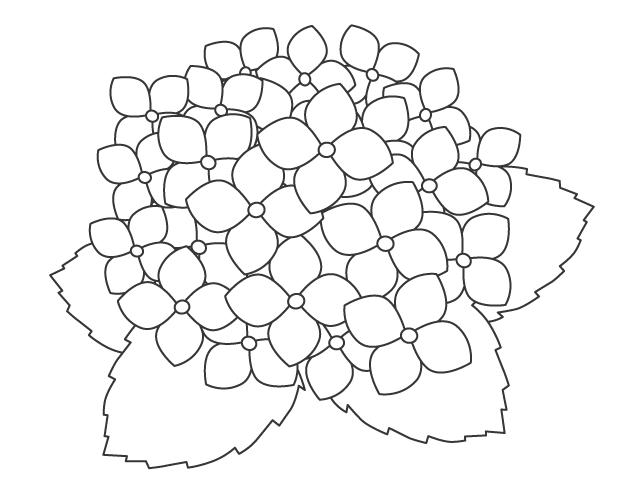 紫陽花(あじさい)のぬりえ