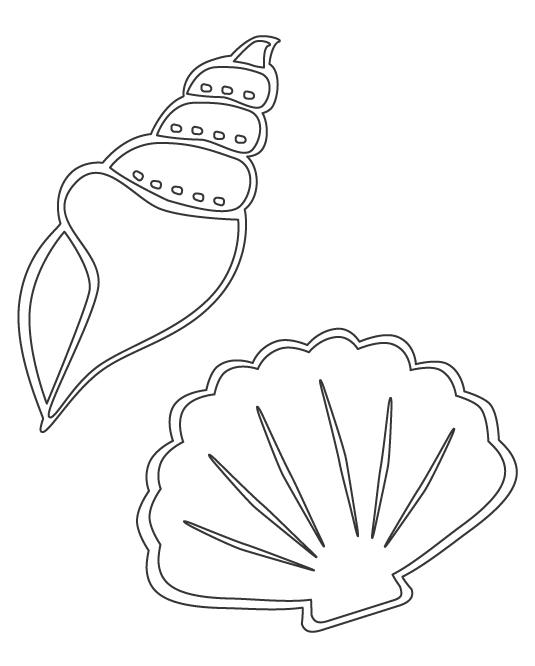 貝殻のぬりえ