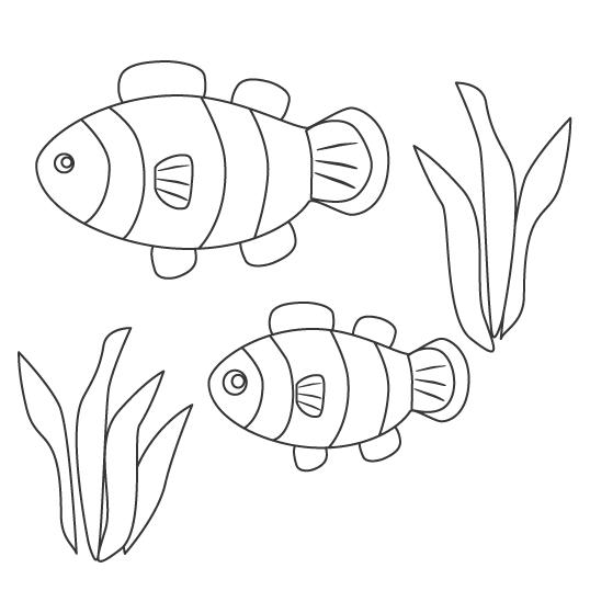カクレクマノミ(熱帯魚)のぬりえ
