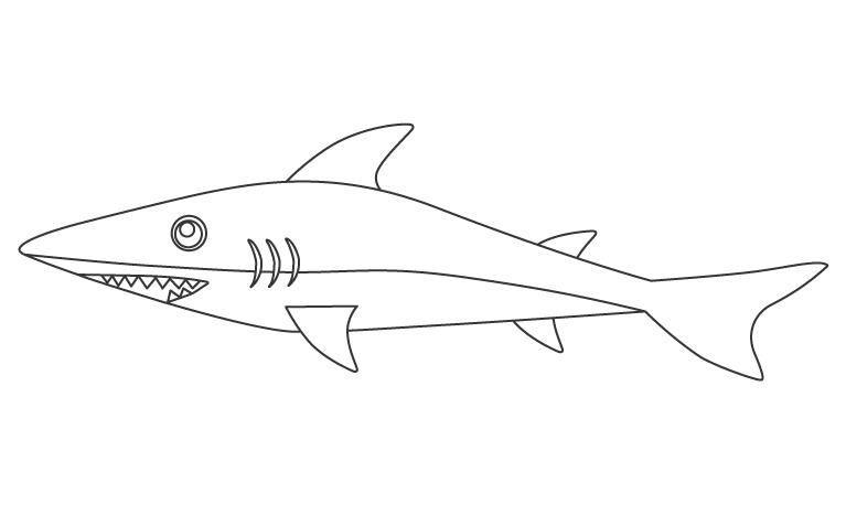 サメのぬりえ