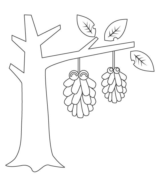 木にぶら下がったミノムシ