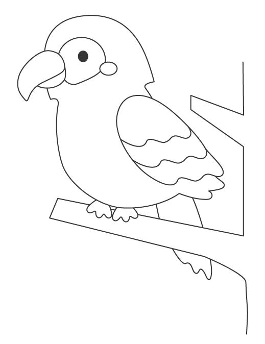 鳥・オウムのぬりえ