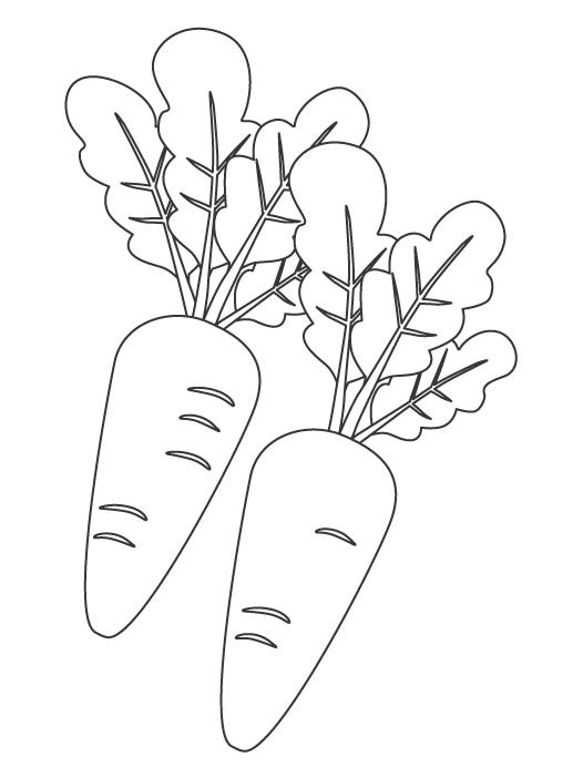 野菜・にんじんのぬりえ