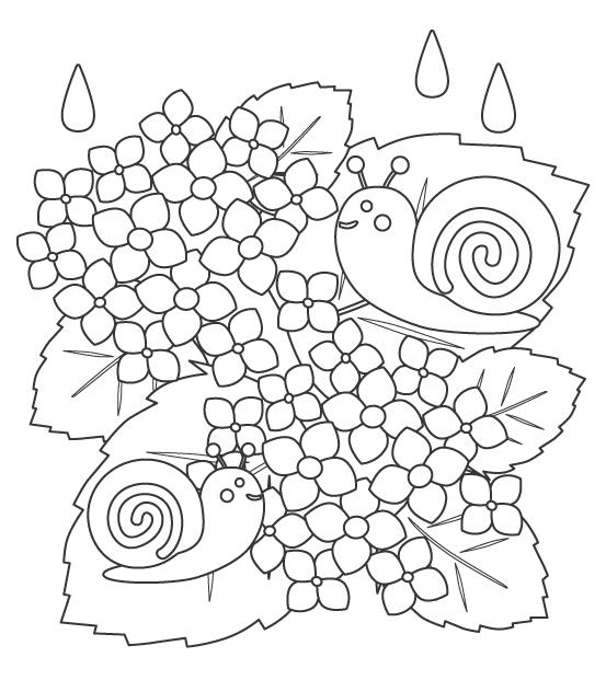 梅雨・紫陽花(あじさい)とカタツムリのぬりえイラスト
