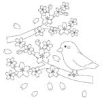 桜と鳥のぬりえイラスト