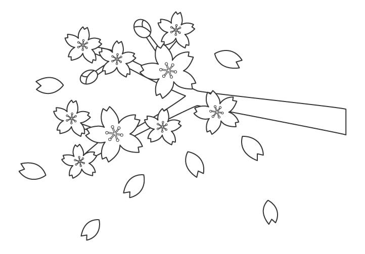 舞い散る桜のぬりえイラスト