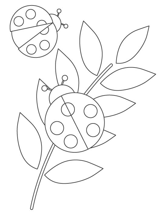 テントウムシのぬりえイラスト