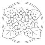 紫陽花(あじさい)のぬりえイラスト02