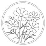 秋・コスモス(秋桜)のぬりえイラスト