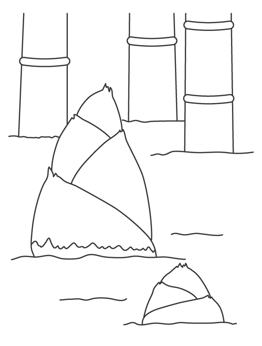 竹とタケノコのぬりえイラスト