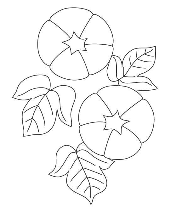 あさがお(朝顔)のぬりえ02イラスト