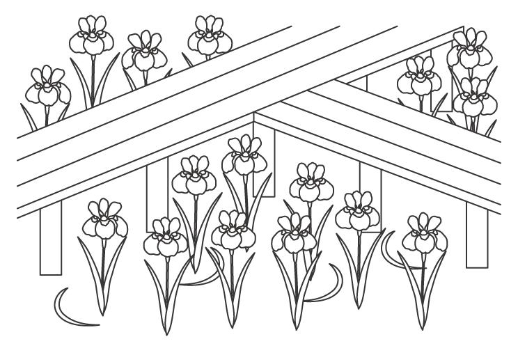 一面に咲くアヤメの花のぬりえイラスト