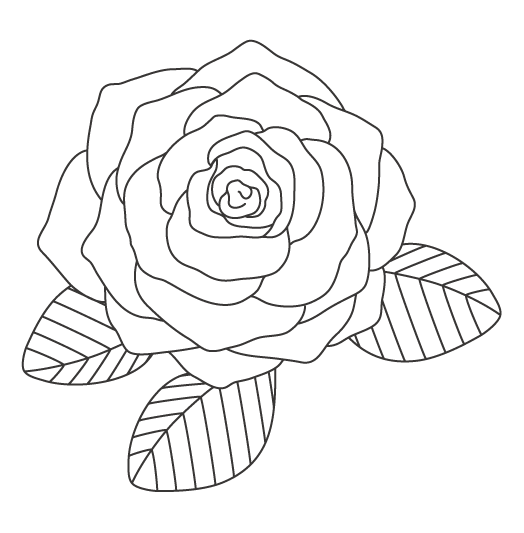 薔薇(バラ)の大輪のぬりえイラスト