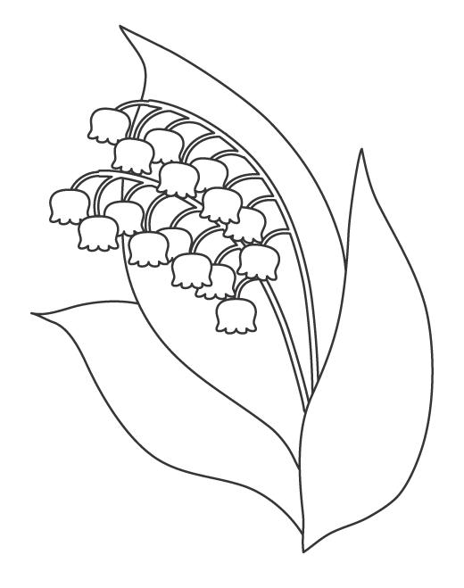 スズランの花のぬりえイラスト