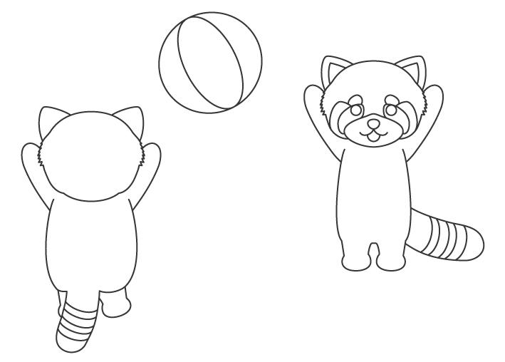 ビーチバレーをするレッサーパンダのぬりえイラスト