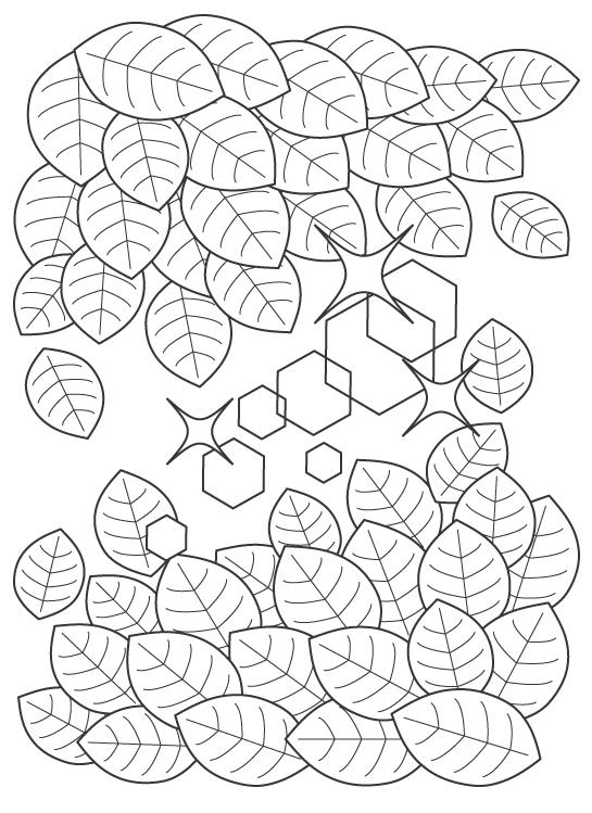 新緑の葉っぱのぬりえイラスト
