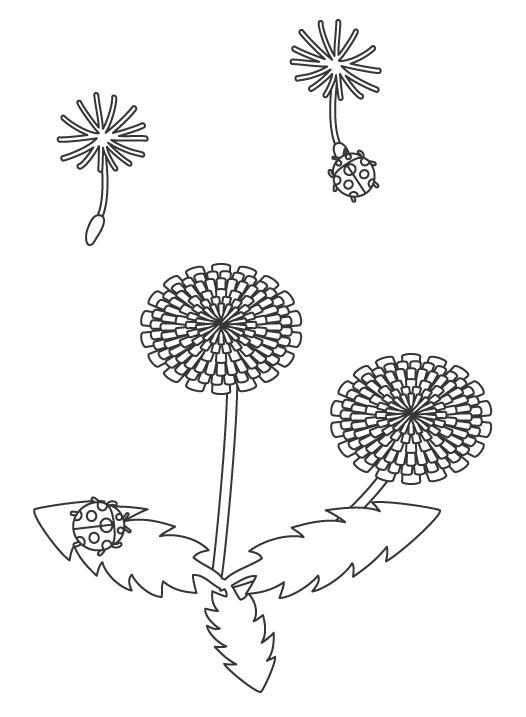 たんぽぽとテントウムシの春のぬりえイラスト